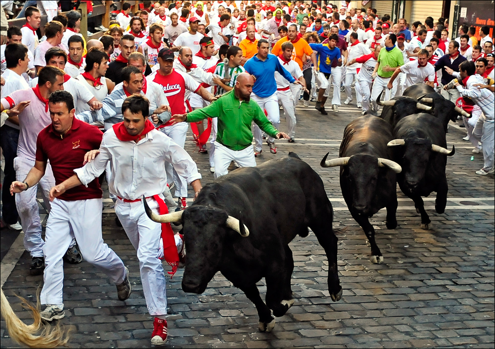 """Képtalálat a következőre: """"bulls in spain"""""""