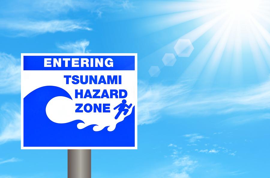 Tsunami Destruction RESN…Tsunami Warning...